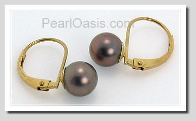 6-6.5MM Black Akoya Pearl Earrings 14K Yellow Gold Leverbacks