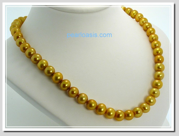 AA+ 8-8.5MM Golden FW Round Pearl Necklace Gold Plated Clasp 16in.